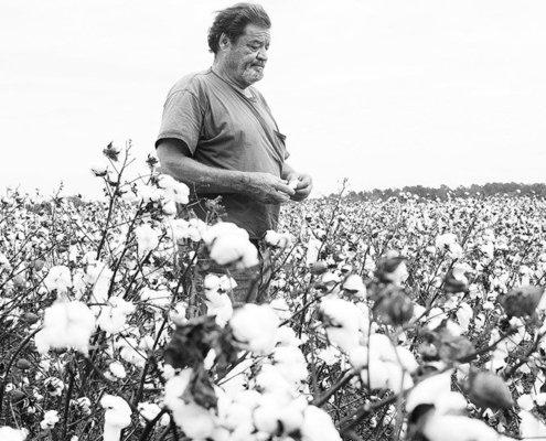 Georgia agriculture photographer